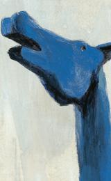 marco-cavallo